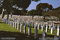 Military cemetery. Point Loma, CA 'Nikon F100 35mm SLR' (Click for larger view)