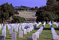 One more view of the military cemetery. If you look very closely you can see the upper lighthouse at the top of the hill in the far background. Point Loma, CA 'Nikon F100 35mm SLR' (Click for larger view)