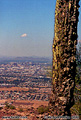 Here is a view from the hills of 'South Mountain Park' looking back down towards the city. Phoenix, AZ. 'Nikon F100 35mm SLR' (Click for larger view)