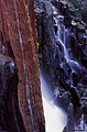 A second view of Eagle Falls in early July. Lake Tahoe, CA 'Nikon F100 35mm SLR' (Click for larger view)
